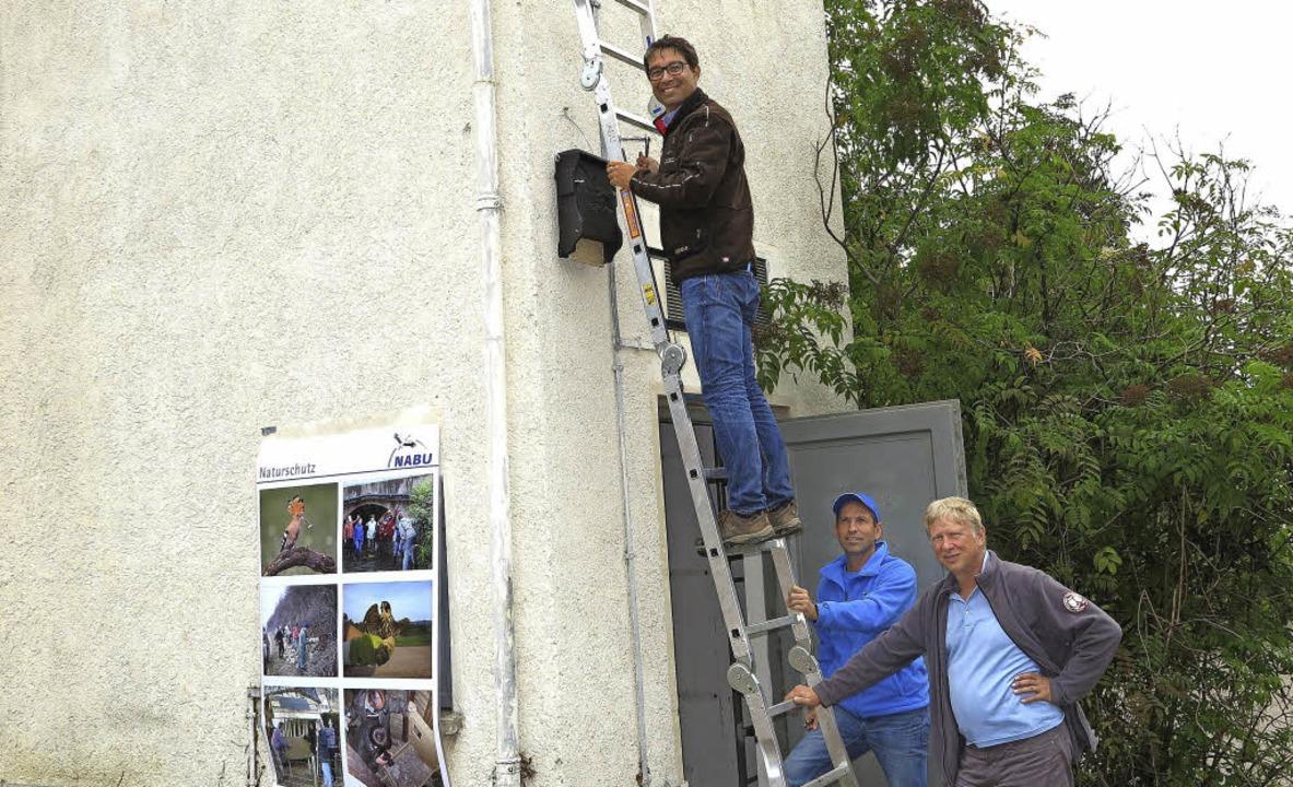 Andre Baumann hängt einen Nistkasten f...Hercher (links) und Klaus Nasilowski.   | Foto: dorothee Philipp