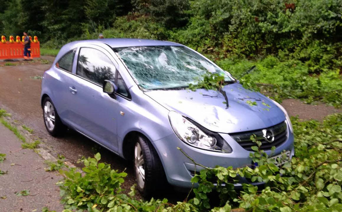 Die Buche hat ein Auto beschädigt.   | Foto: Gemeinde Grenzach-Wyhlen