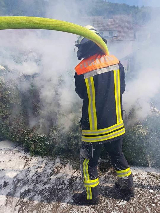 Die Feuerwehr Wehr konnte den Heckenbrand schnell löschen.  | Foto: Feuerwehr Wehr