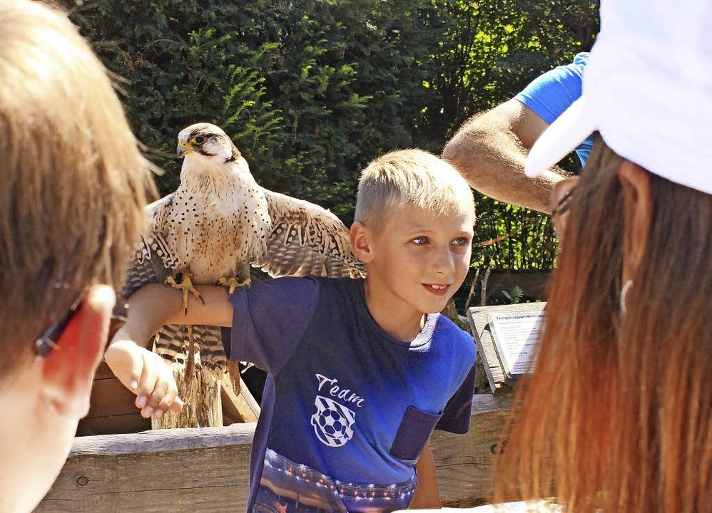 Schaut mal, ich habe 'nen Vogel:...ie Altersgenossen schwer beeindrucken.  | Foto: Heiner Fabry