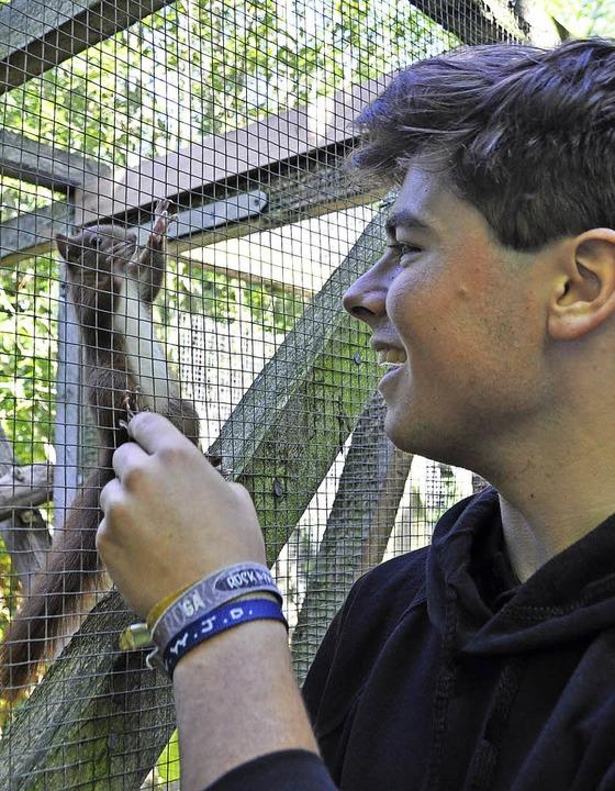 In der Eichhörnchen-Station päppelt Sa...ozsgai kranke und verletzte Tiere auf.  | Foto: Rainer Ruther