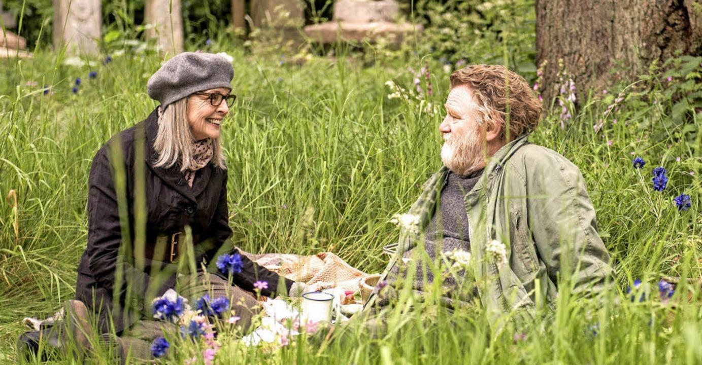 Die amerikanische Witwe  und der gestr...ner: Diane Keaton und Brendan Gleeson   | Foto: dpa