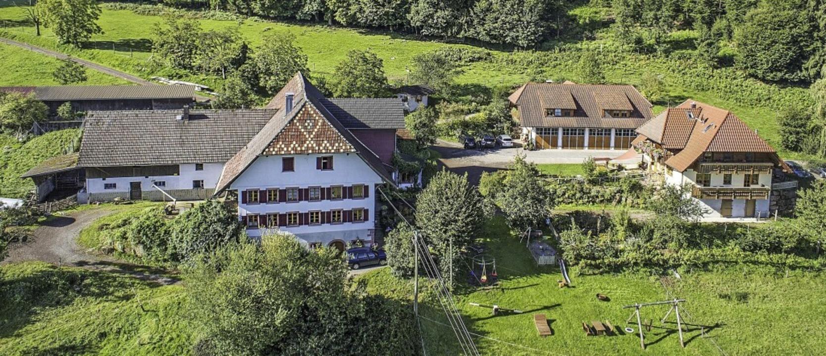Der Haghof in Seelbach liegt über dem Steinbächle am Sauberg.  | Foto: Horst Fahrländer
