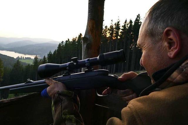 20 Uhr: Ansitzen mit Aussicht bei der Jagd am Hochfirst