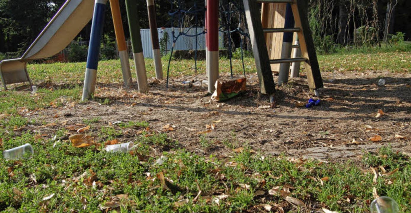 Im Hebelpark liegt viel Müll unter dem Klettergerüst.    Foto: Hannah Fedricks Zelaya