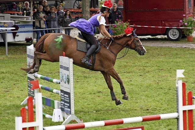 Rundum gelungenes Pferdesportfest