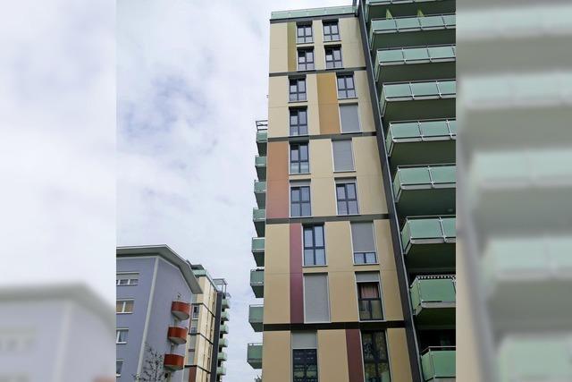 Die Wohnbau wächst kräftig weiter
