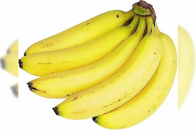 Forscher sorgen sich um die Banane