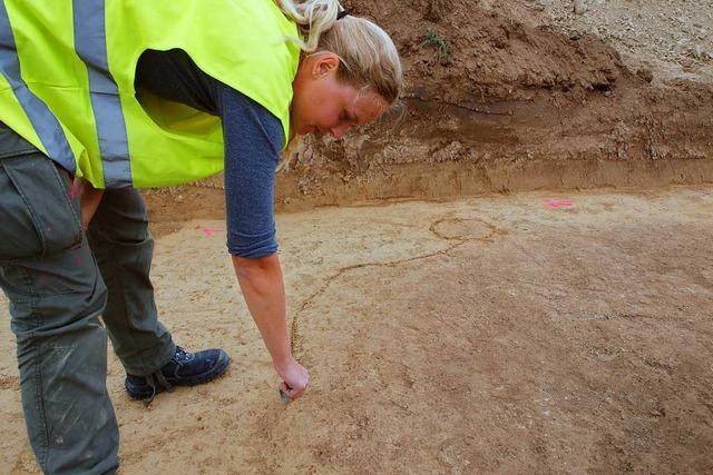 Archäologen entdecken in Wyhl Spuren der Kelten