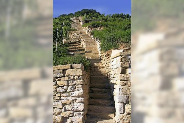 Wein-Genuss-Tour Castellberg