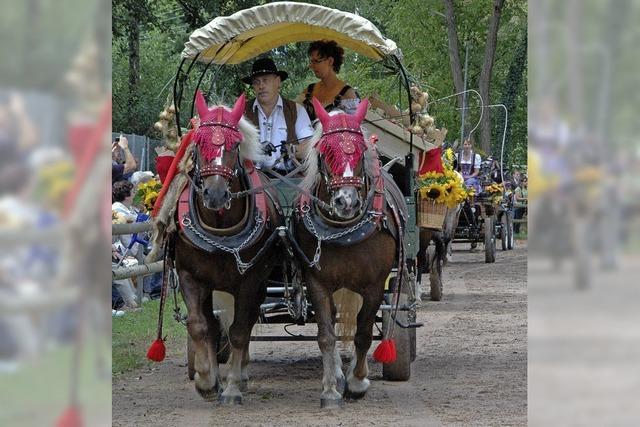 Pferdesport und rustikales Budendorf