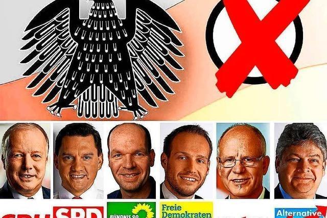 Wahlkreis Lahr stellt nur einen von acht Direktkandidaten
