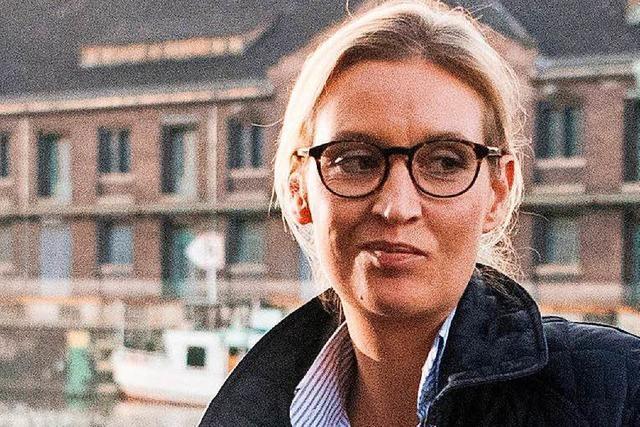 Alice Weidel: Die Senkrechtstarterin