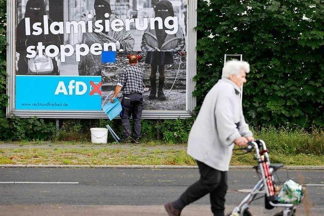 Neue Umfrage sieht AfD im Südwesten im Aufwind, SPD bei 17 Prozent