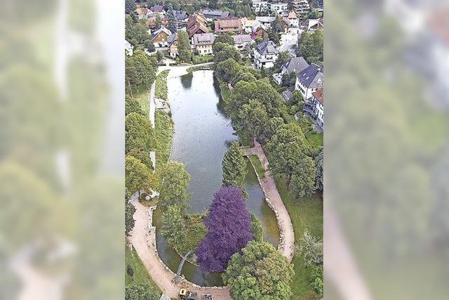 Keine Einweihungsfeier des Eisweihers in Titisee-Neustadt