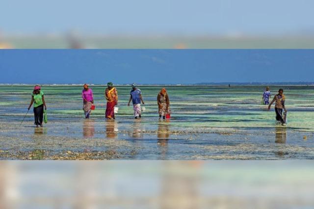 Urlaubsfotos im Onlinebereich