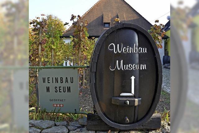 Neue Ideen für das Weinbaumuseum