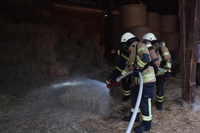 Schwelbrand auf dem Mundenhof: Feuerwehreinsatz