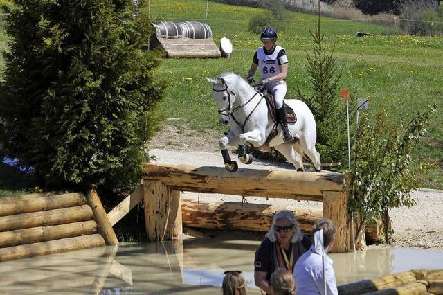 Reiter und Pferd müssen Springvermögen beweisen
