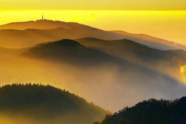 Tourismuschef will Schwarzwald zum