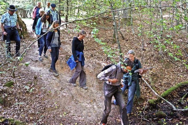 Naturfreunde nehmen ein Bad im Wald