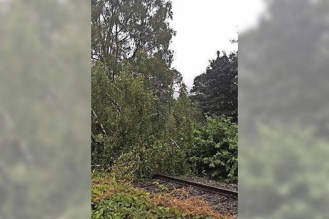 Sturm legt die Bahn lahm