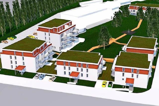Sechs Stadtvillen sollen im Akad-Park in Lahr entstehen