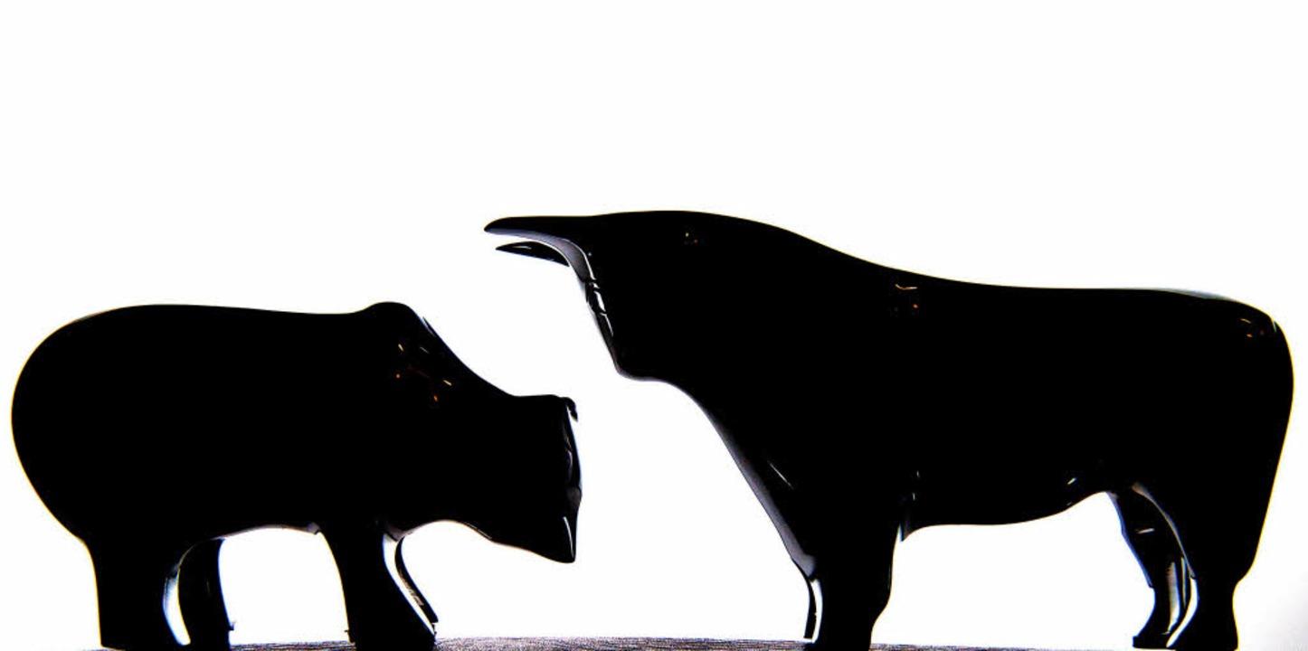 Bulle und Bär, die beiden Symboltiere ...t ein gewerkschaftsnahes Institut vor.  | Foto: dpa
