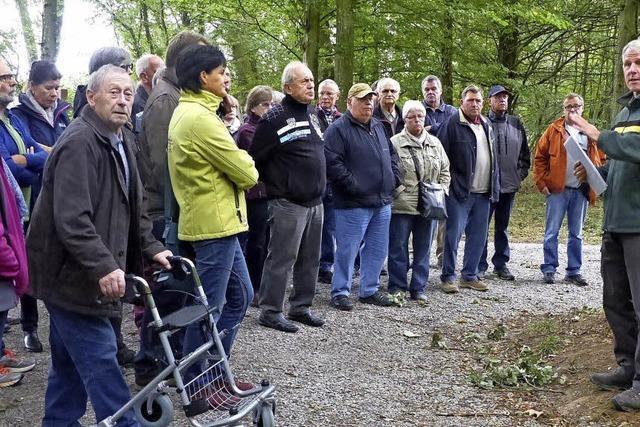 Interesse an Bestattungswald ist groß