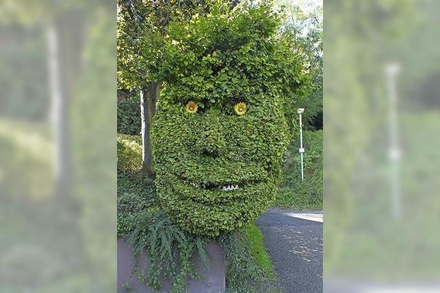 Grün im Gesicht