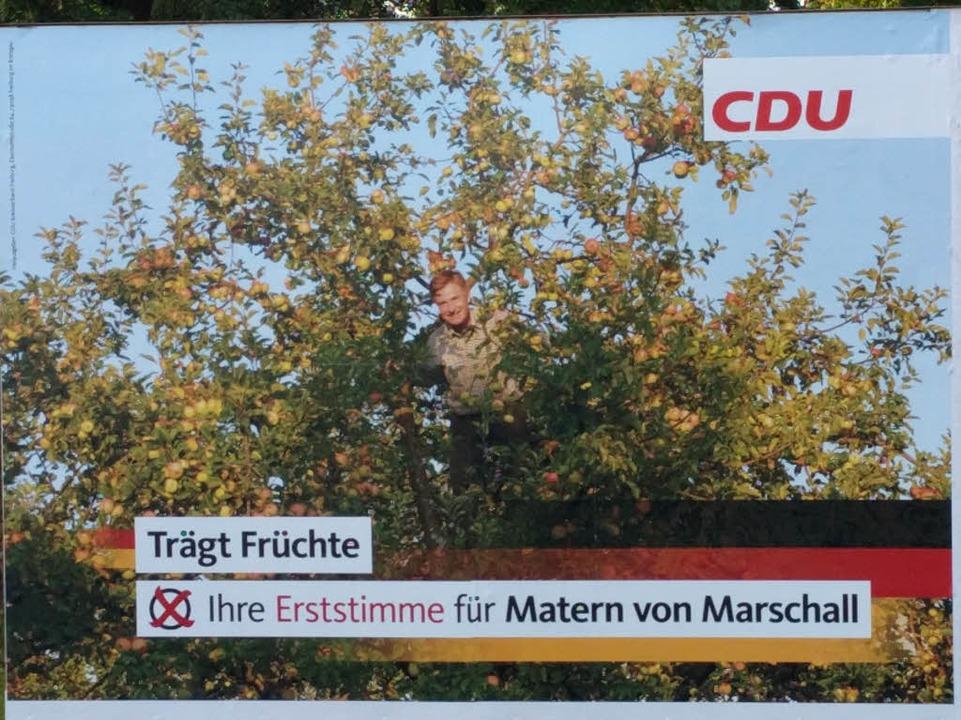 Matern von Marschall im Apfelbaum.  | Foto: Judith Fiedler