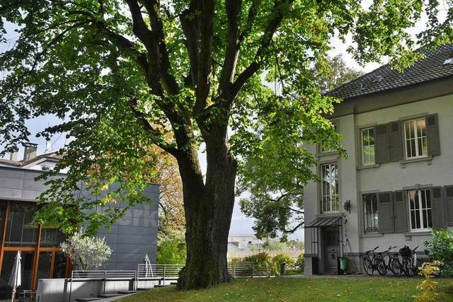 Die Schöpflin-Stiftung in Lörrach: Seit 15 Jahren eine Institution