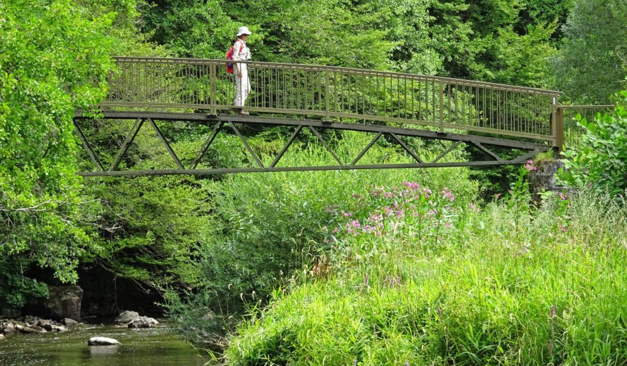 Wildromantisch:  die Nahebrücke  | Foto: Rolf Müller