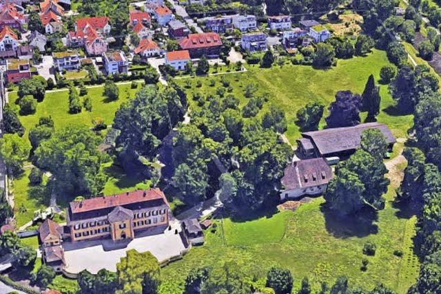 Räte kritisieren Schlosspark-Pläne