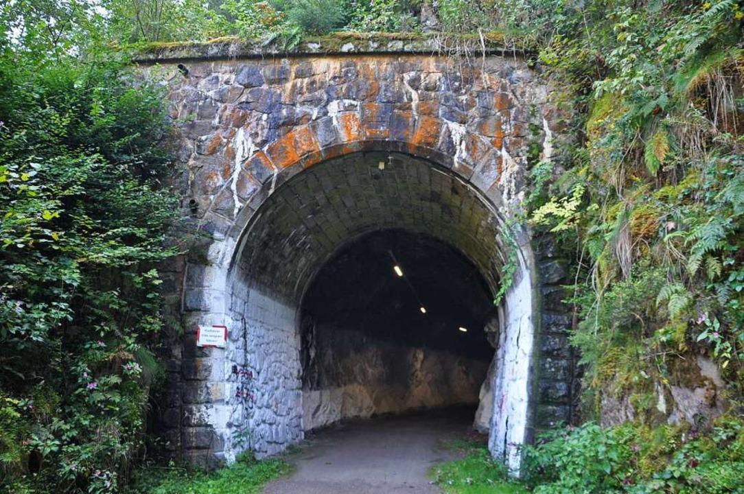 Der Hepschinger Tunnel  | Foto: Nicolai Kapitz