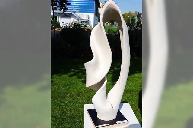 Rheinfelder gewinnt Kunstwettbewerb