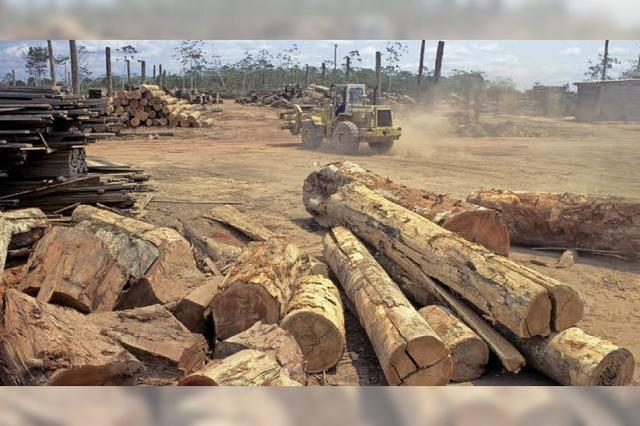 Bergwerksunternehmen verdrängen Indios in Brasilien