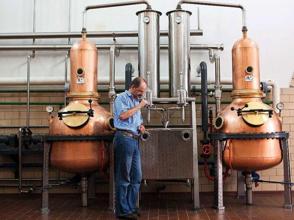 Die Nase des Brennmeisters Thomas Wiedmann ist maßgeblich für die Qualität  | Foto: Schladerer