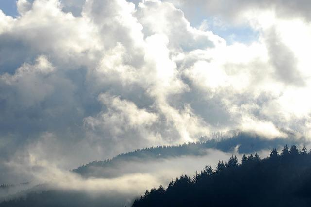 Einwohnerzuwachs verdirbt Freiburg die Klimabilanz