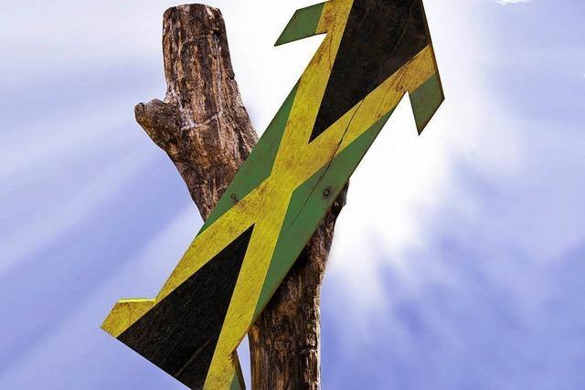Mögliche Jamaika-Partner bei vielen Themen uneinig