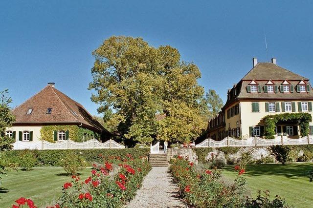 Blühende Schau im Schloss Bollschweil