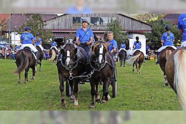 Mensch und Pferd im gelungenen Miteinander