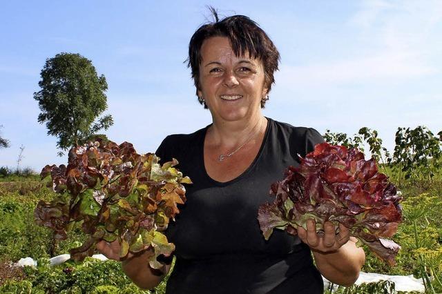 Gemüse frisch vom Bauernhof