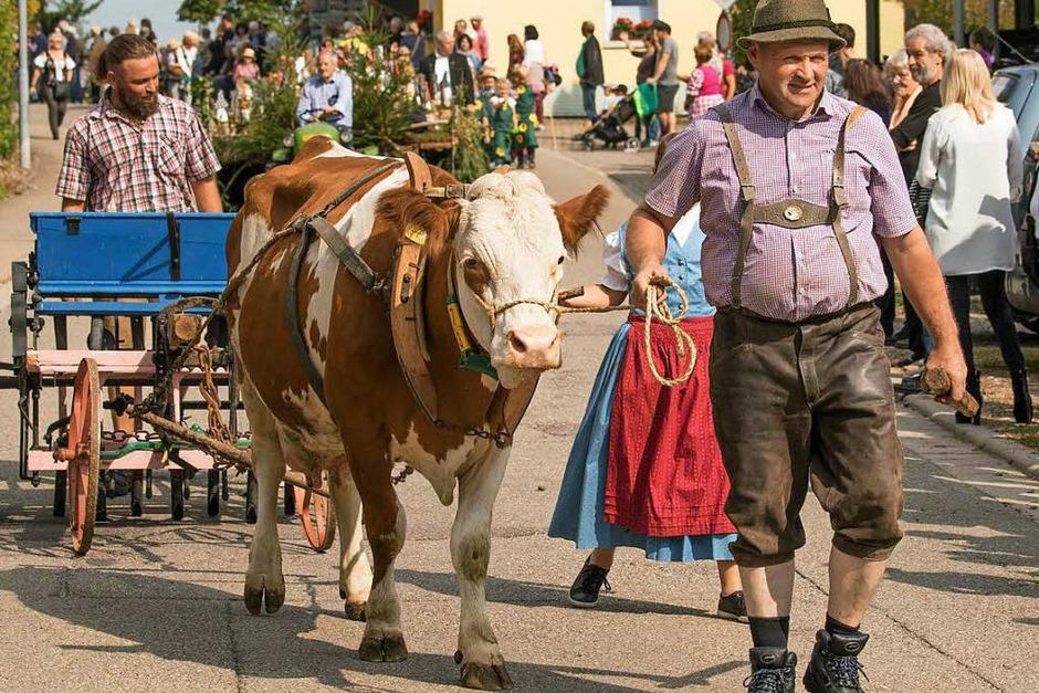 Das Erntedankfest in Berau gestaltete sich vielfältig. (Foto: Wilfried Dieckmann)