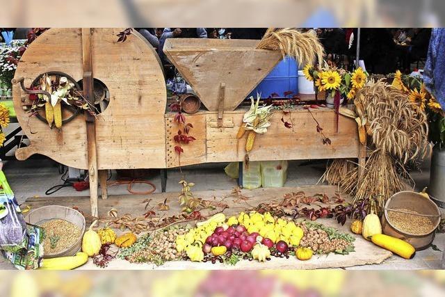 Hasler Bauernmarkt im Dreschschopf