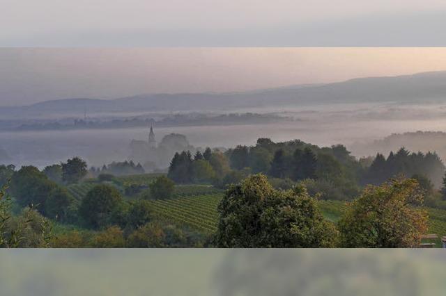 Ettenheim versteckt sich im Herbstnebel