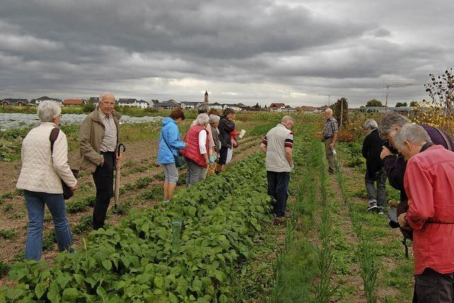 Ökologisch, regional und solidarisch