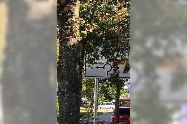 Verkehrsschild zu nah am Baum