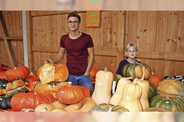 Herbstliche Farben, Früchte und Düfte