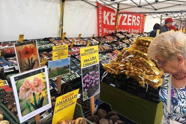 Dauerbrenner seit 1924: Die Oberrheinmesse ist eröffnet